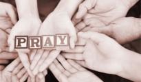pray002tb