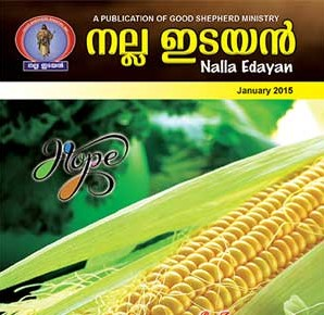 NallaIdayan2015-tb